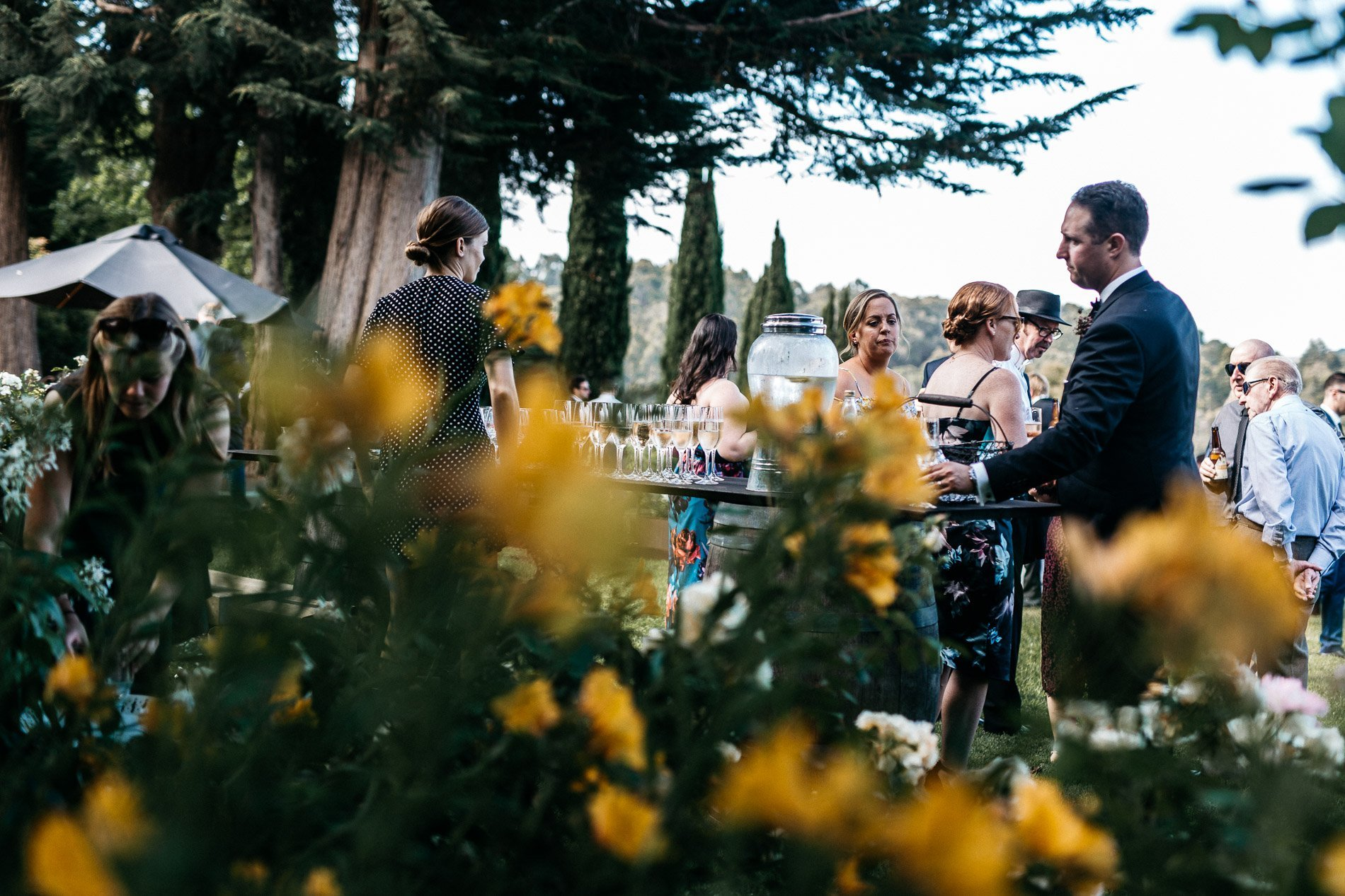 bride and groom Panton Vineyard wedding fern and sone photography red hill wedding serving wine